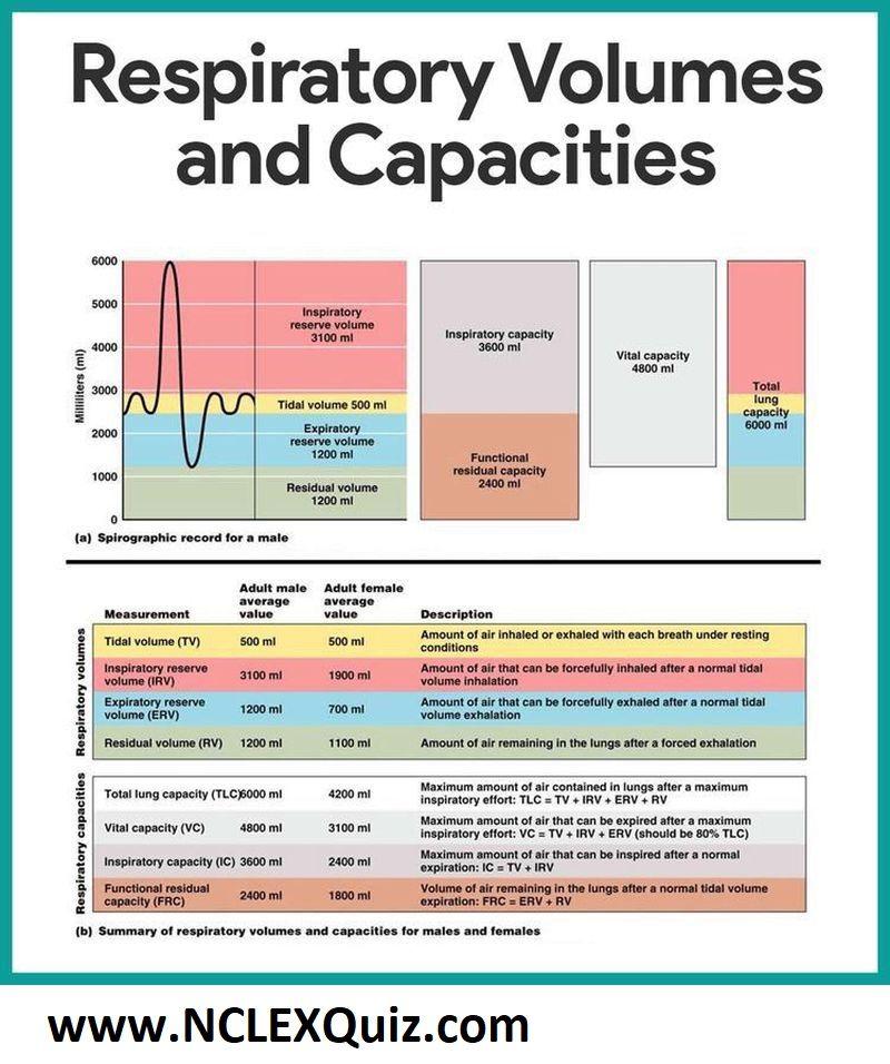 Pft Interpretation Chart Simple Interpretation Of Pulmonary Function Test Respiratory System Anatomy Respiratory Therapist Student Respiratory Therapy Student