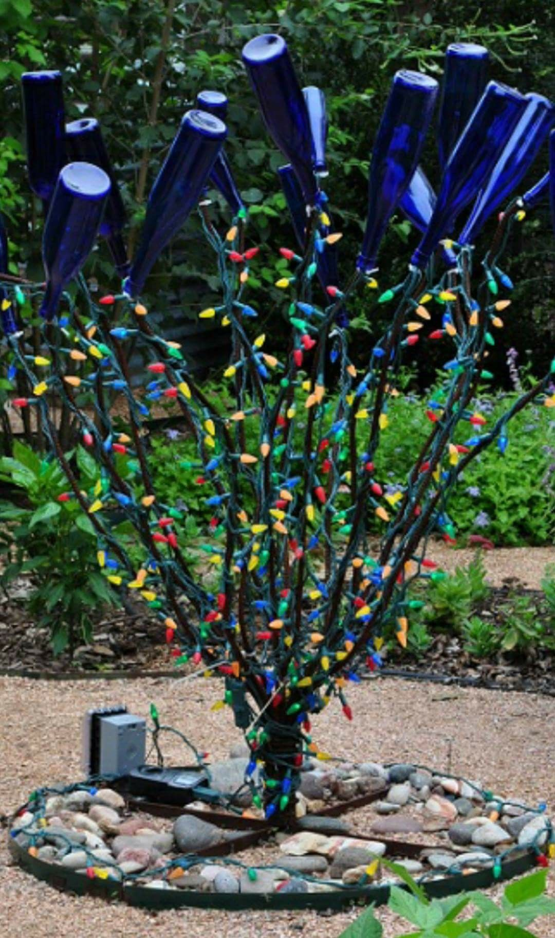 c12cb1d22576f5786cc66d1cda3c9346 - Blue Bottle Trees Gardens And Collections