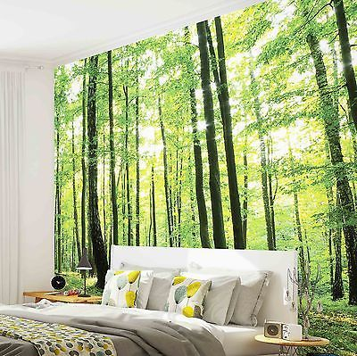 fototapete wand bild tapeten w 186 ve blumen wald natur bald wald im kizi fototapete. Black Bedroom Furniture Sets. Home Design Ideas