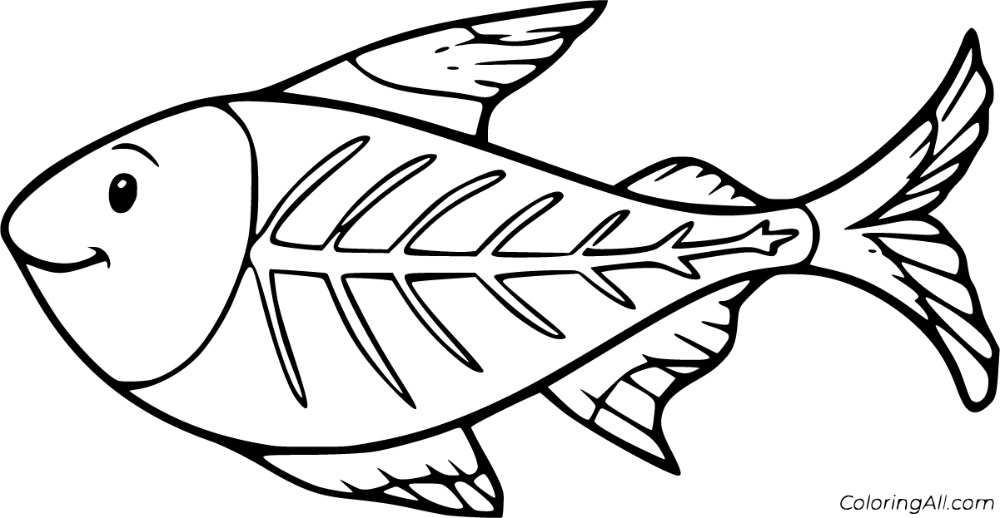 10 Free Printable X Ray Fish Coloring Pages In Vector Format Easy To Print From Any Device And Automatically Fit Any P Fish Coloring Page Coloring Pages Color