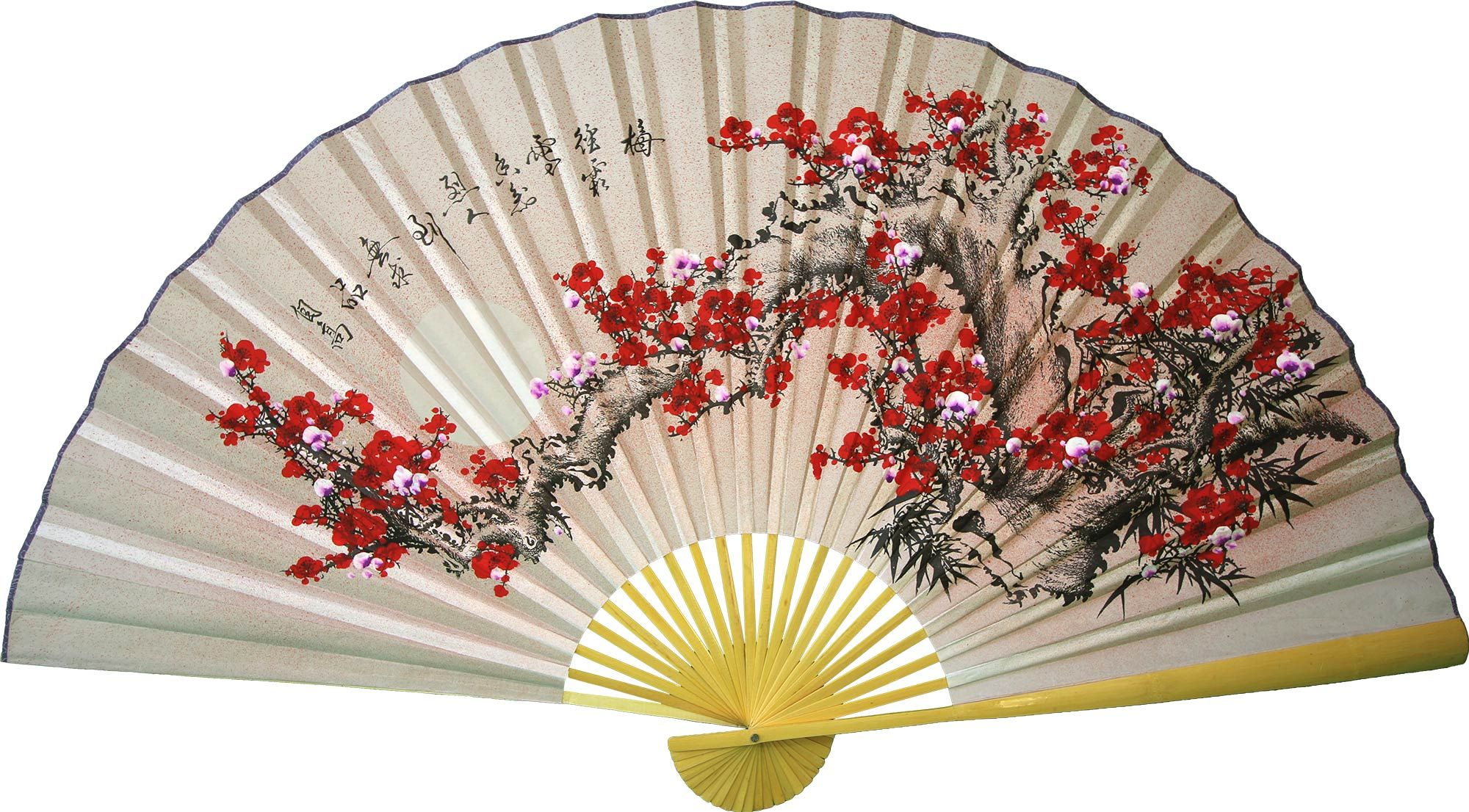 New Chinese Japanese Foldable Lace Trim Hand Fan  Floral Print 6 Colors