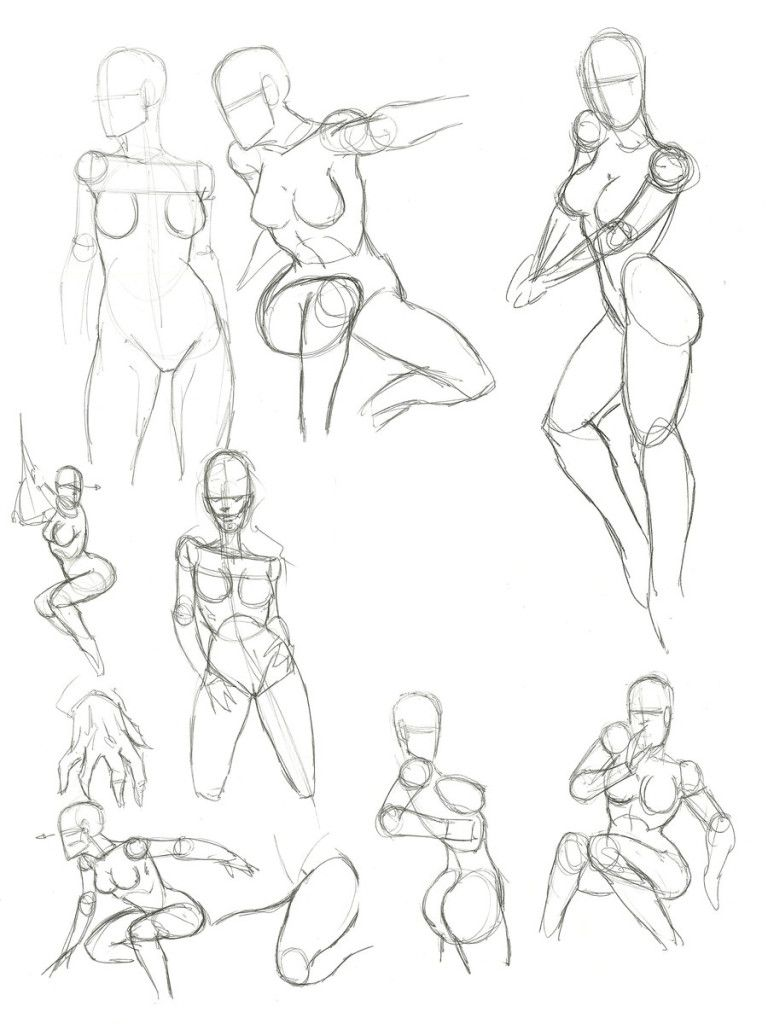 Female Anatomy Drawing How To Draw A Female And Womans Anatomy