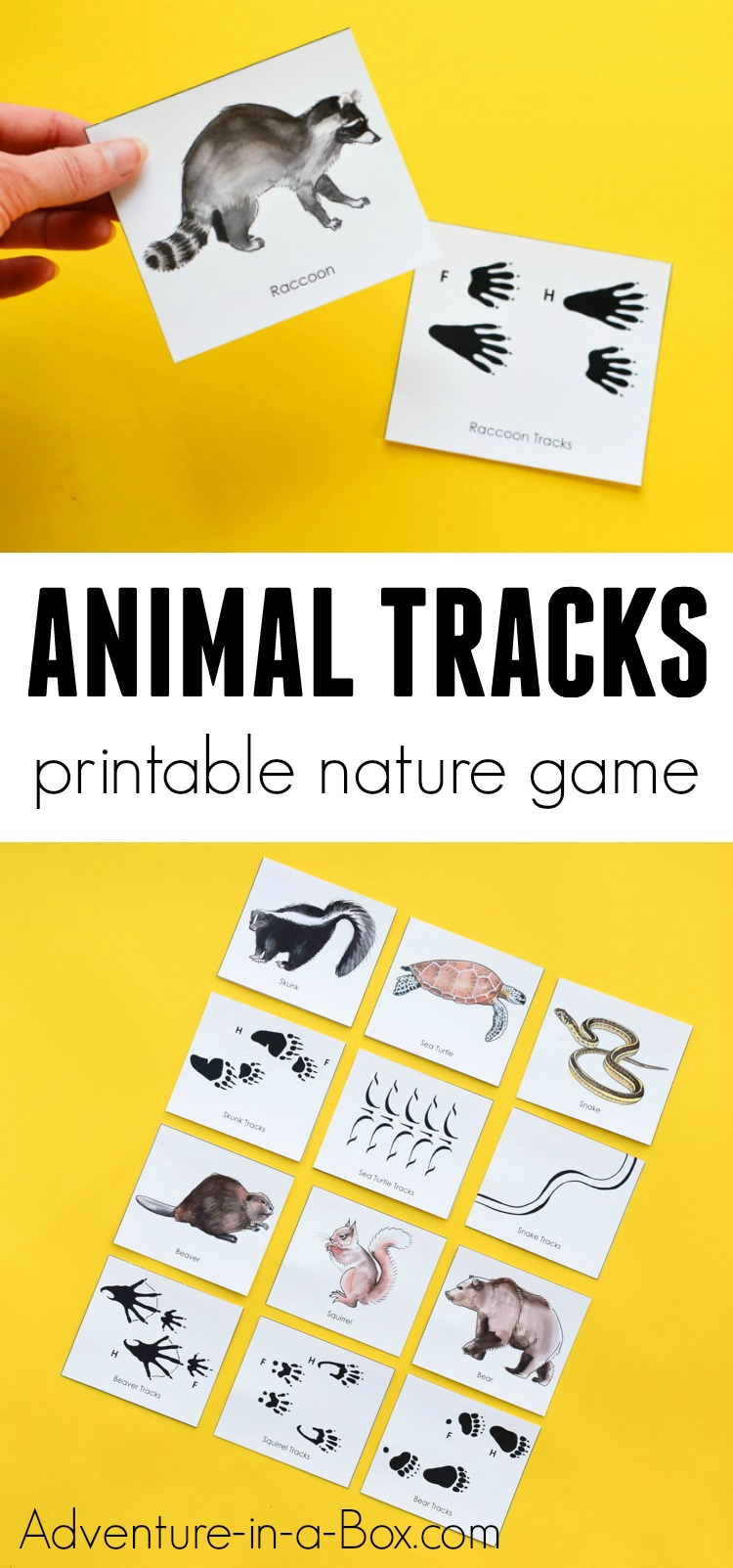 Animal Tracks Printable Nature Game For Kids Animal Activities For Kids Printable Games For Kids Kids Learning Activities [ 1603 x 750 Pixel ]