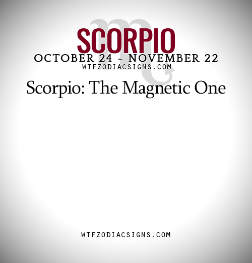 Scorpio: The Magnetic One   - WTF Zodiac Signs Daily Horoscope!