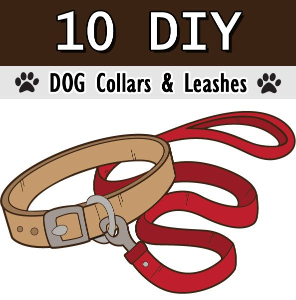 10 Diy Dog Collars And Leashes Diy Dog Collar Dog Collars