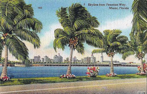 c12f22d3cfce2cd3b64ca764fd54f8bd - Donna's Caribbean Restaurant Miami Gardens Fl