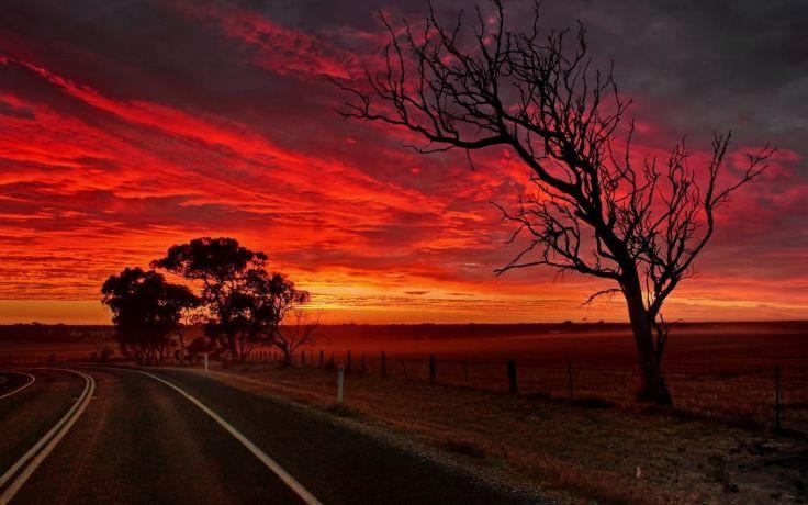 Sunset Clouds Landscapes Sun Trees Roads Skies Orange Sky Sunset Road Sunset Sunset Images