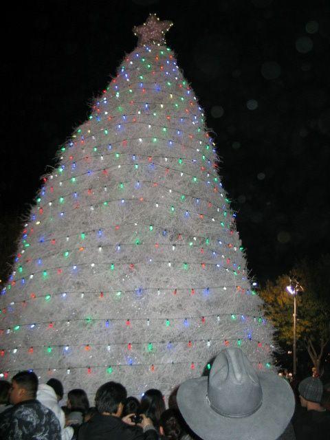 LIGHTED Tumbleweed Christmas Tree in Chandler, Arizona 50 STATES