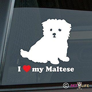 More People I Meet I Like My Dog Vinyl Die Cut Decal Bumper Sticker Pet Pets 099
