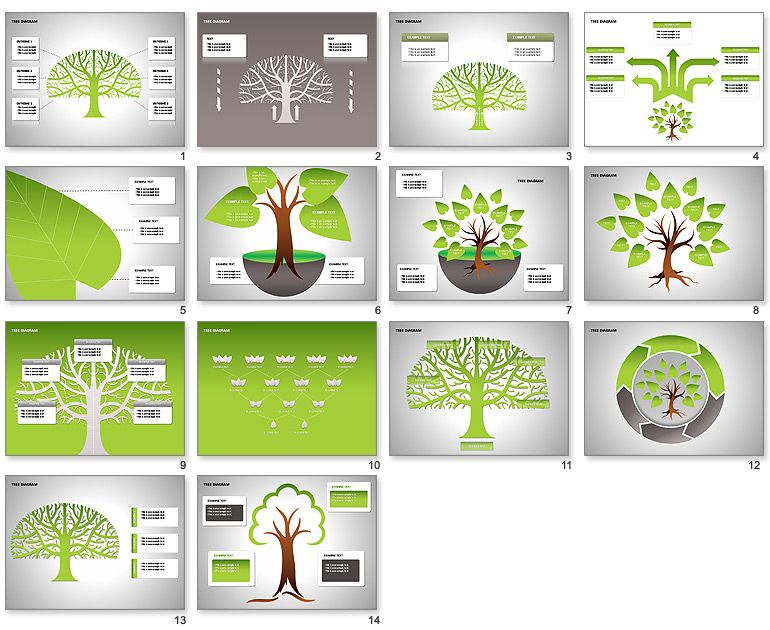Tree Diagrams powerpoint Pinterest Diagram and Green business - tree diagram template