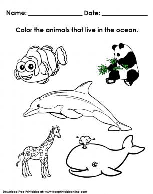 coloring animals live in water worksheet kindergarden worksheets water animals preschool. Black Bedroom Furniture Sets. Home Design Ideas