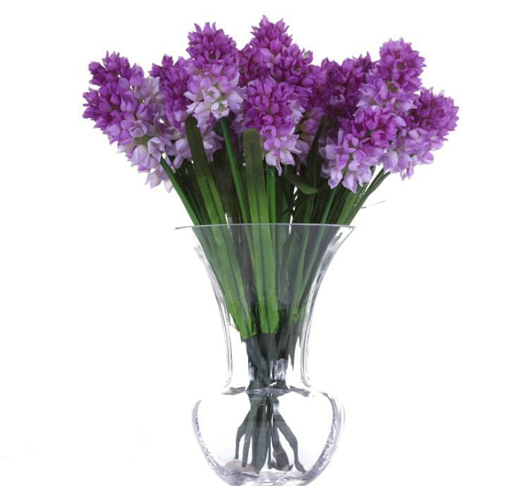 hyacinth - Google Search | Everything floral! Flowers, blooms and a ...
