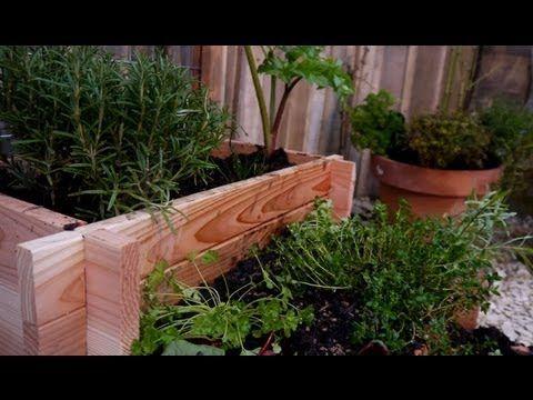 Cultiver Des Plantes Aromatiques En Pot Youtube Jardin