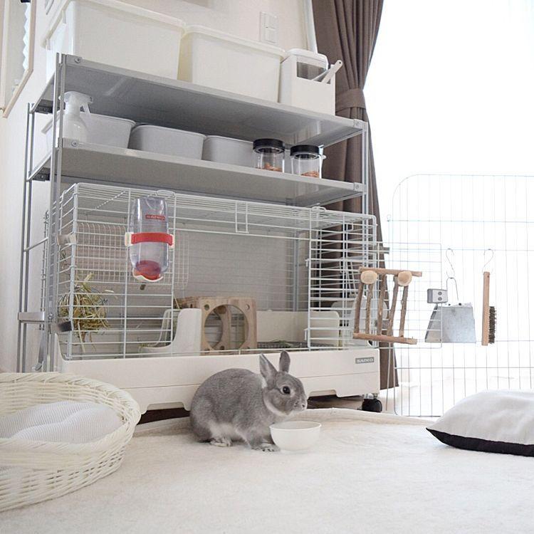 部屋全体 ペットと暮らす家 スチールユニットシェルフ ペット用品 収納 などのインテリア実例 2017 08 06 00 32 09 Roomclip ルームクリップ ウサギ 部屋 ウサギ用ハウス ペット