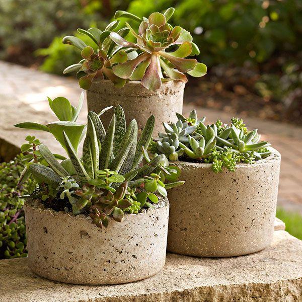 Beautifully rustic hypertufa pots set off the organic, green textures of succulents