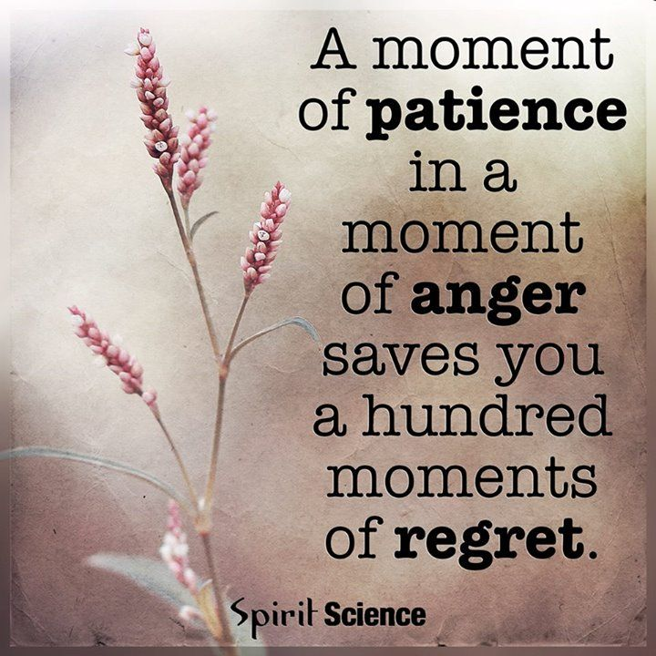 Patience Quotes Classy A Moment Of Patience In A Moment Of Anger Saves You A Hundred Moment