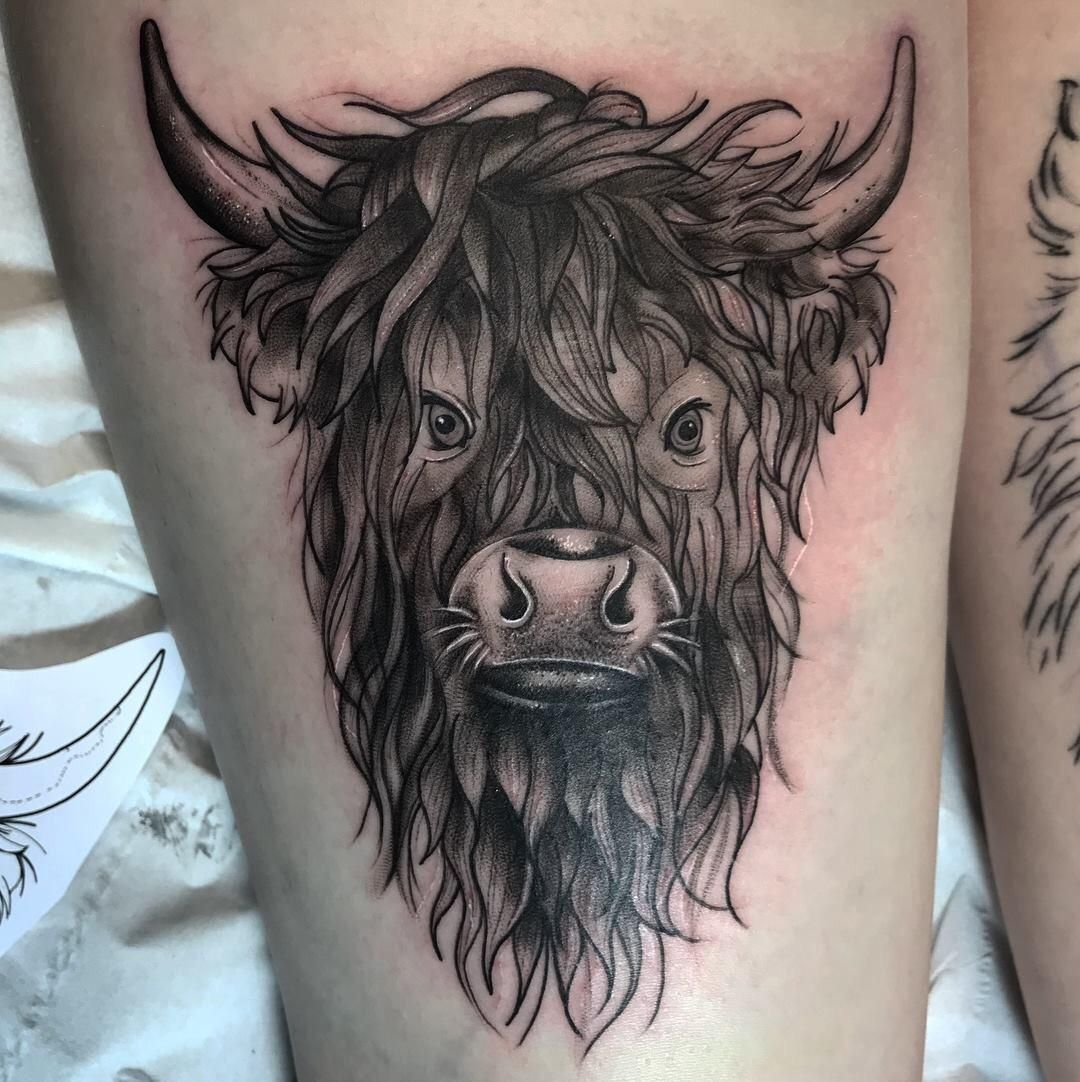 Highland Cow By Danielle Eleanor The Sacramental Tattoo Family Glasgow Bull Tattoos Bull Skull Tattoos Skull Tattoo Flowers
