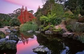 c132ebdf545cbd260cc249ac04530c56 - Where Is Mount Annan Botanic Gardens