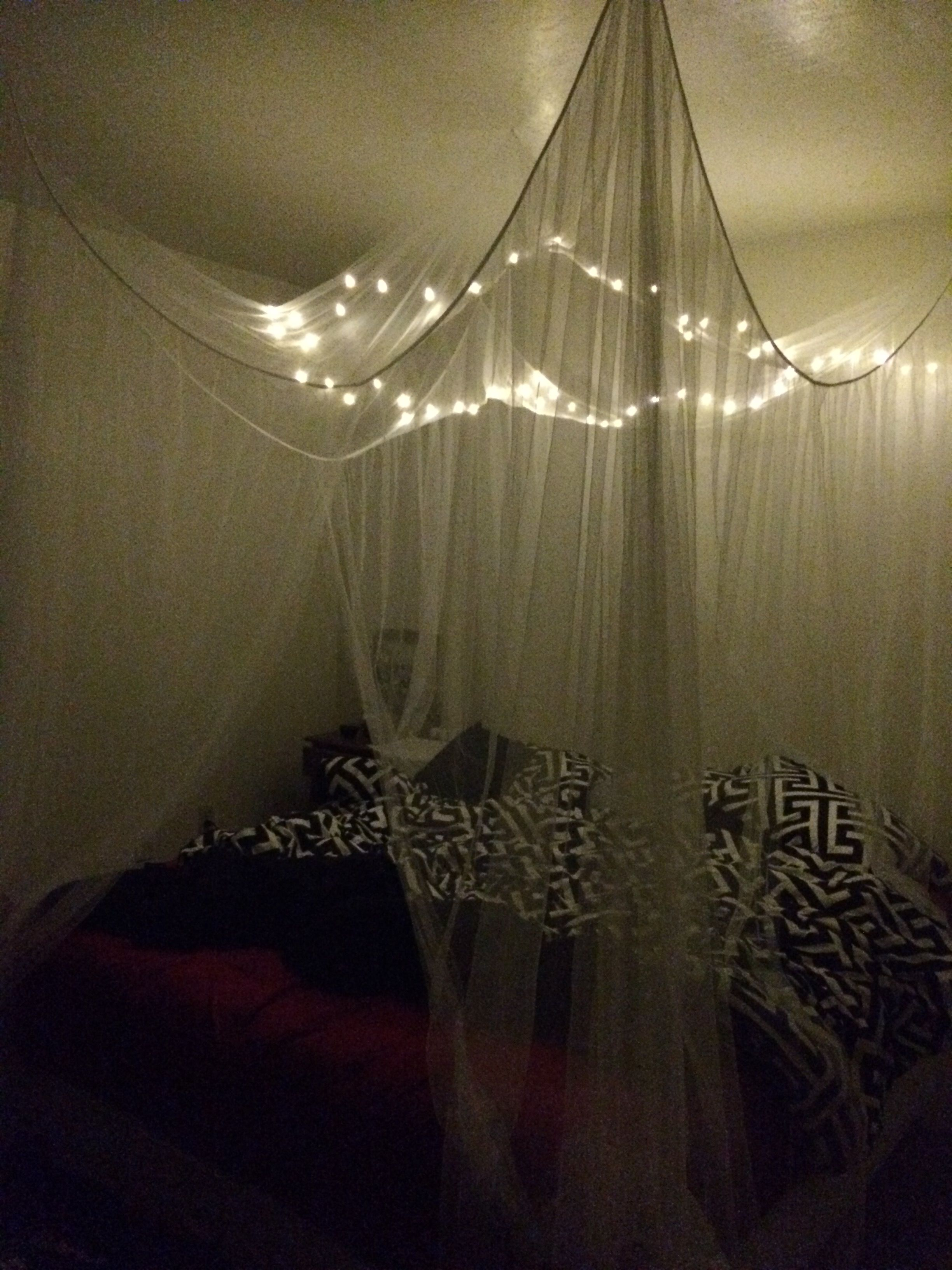 Dreamy Canopy Mosquito Netting From Wish Com And Fairy Lights