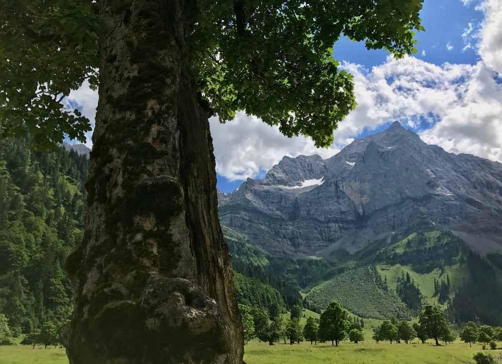 Der Ahornboden Im Karwendel Top Ausflugsziel In Tirol Vakantie