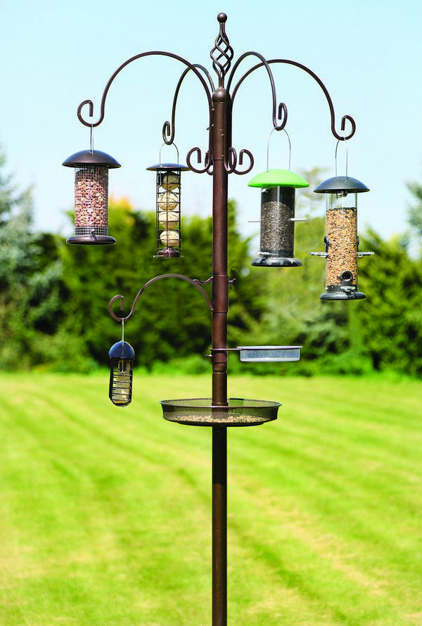 Grand Bird Station Powerscourt Garden Pavilion Bird Feeding Station Bird Feeders Backyard Birds Sanctuary