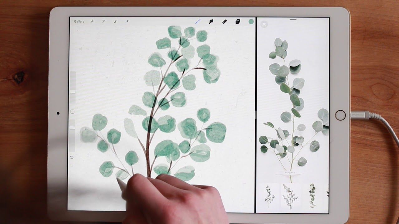 How To Paint Watercolor Eucalyptus Wreaths In Procreate On The