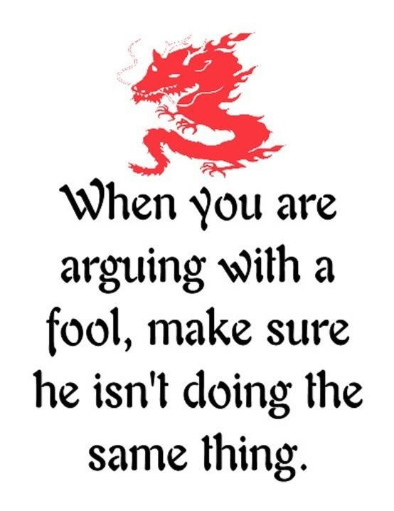When You Are Arguing With A Fool Make Sure He Isnt Doing The Same