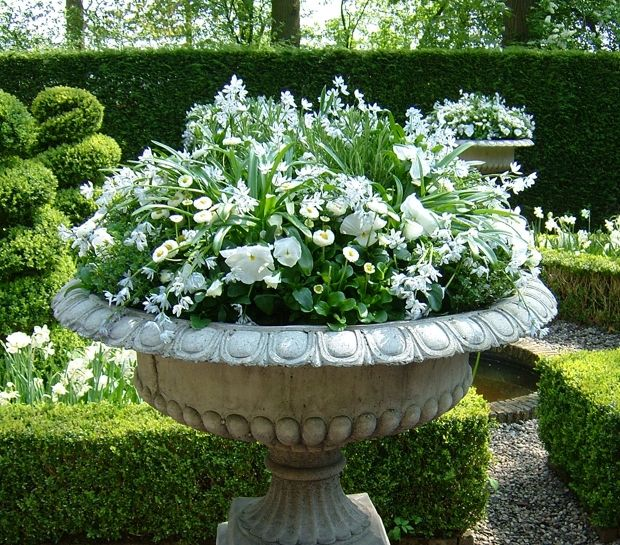 Great Garden Ideas · ~Simple Container ...