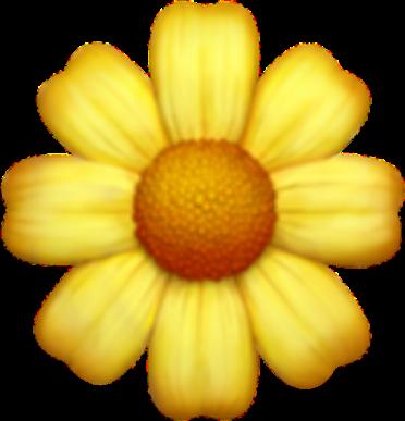 Popular And Trending Flower Stickers Flor Emoji Gravador De Tela Flores Amarelas