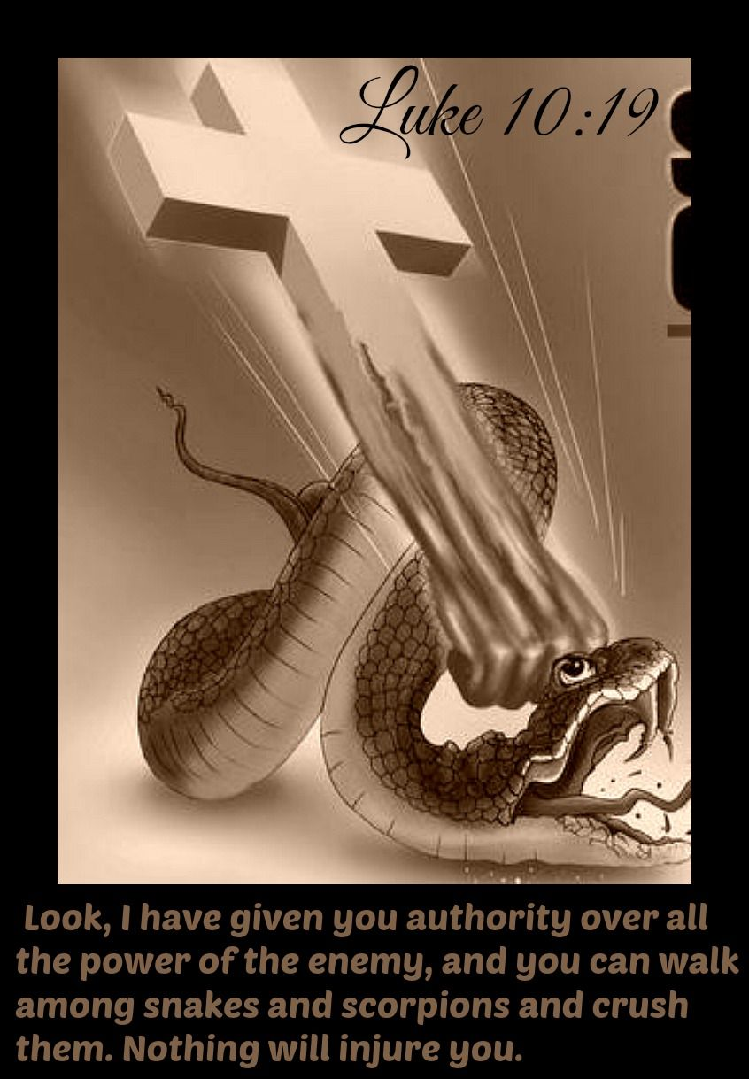 Luke 10:19 Look, I have given you authority over all the power of the enemy, and  you can walk among snakes… | Bible scriptures, Spiritual warfare, Christian warrior