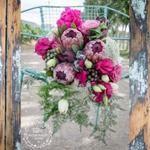Protea Bouquet Recipe #1: Protea & Bougainvillea