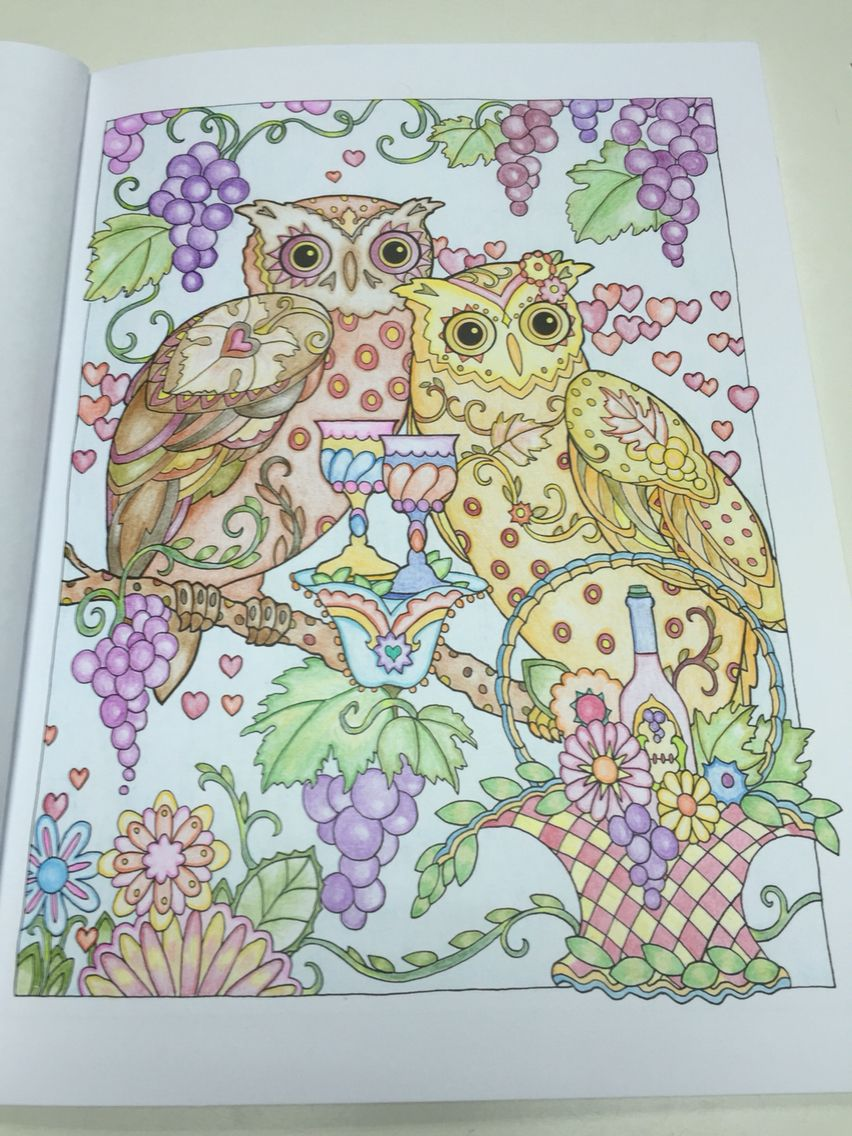 Creative Haven Owls 11