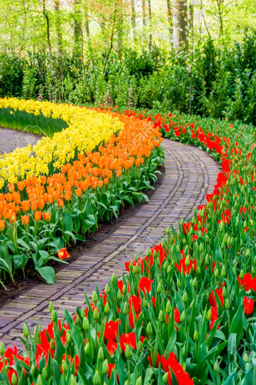Beautiful Images Flower Gardens Beautiful Flowers Garden Flower Garden Images Garden Images