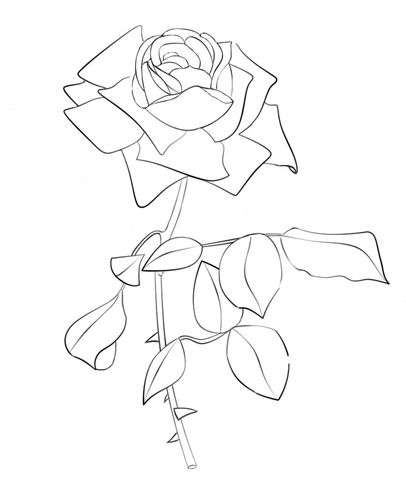 rose coloring page from roses category select from 24104 printable crafts of cartoons nature