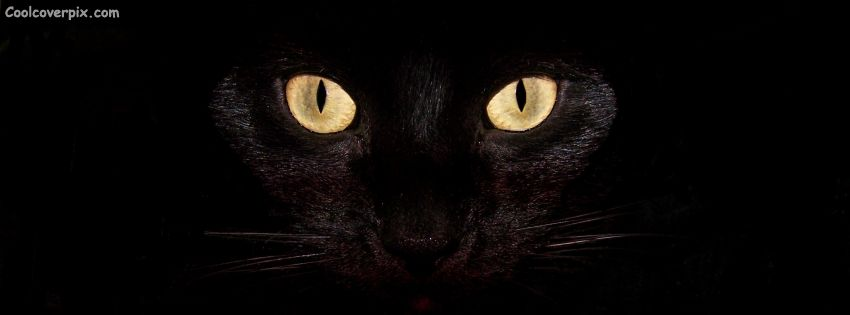Black Cat With Pink Scary Eyes: Scary Cat Eyes Halloween FB Cover A Really Horrifying