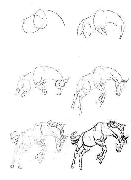 Ein Pferd Zeichnen Dekoking Com 5 Sketch Bleistiftzeichnung In