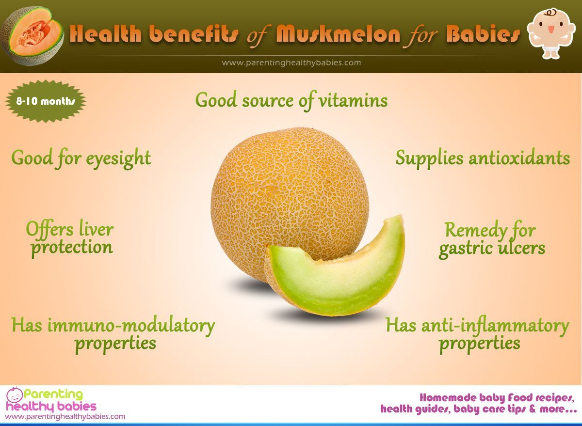 Health Benefits Of Muskmelon Or Cantaloupe For Babies Muskmelon Melon Benefits Fruit Benefits In about 1881, france was the first country to export cantaloupes to the united states. health benefits of muskmelon or