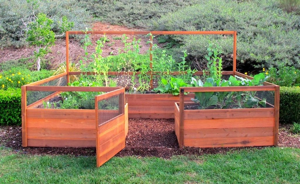 Cedar Complete Raised Garden Bed Kit 8' x 12' Building