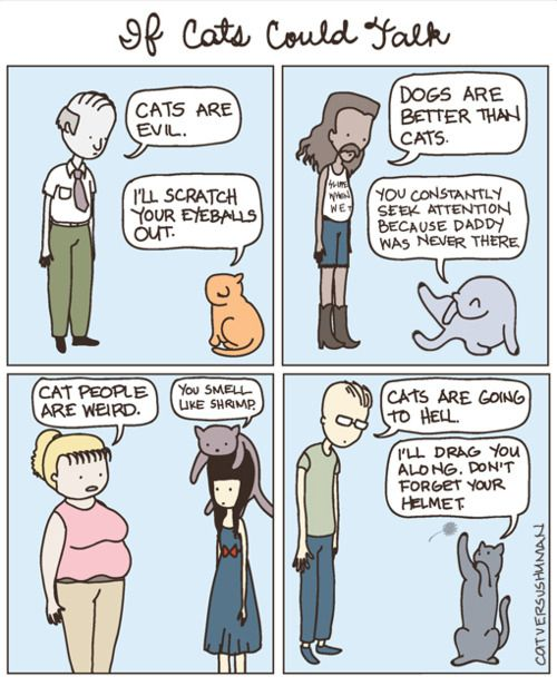facts why dogs are better than cats