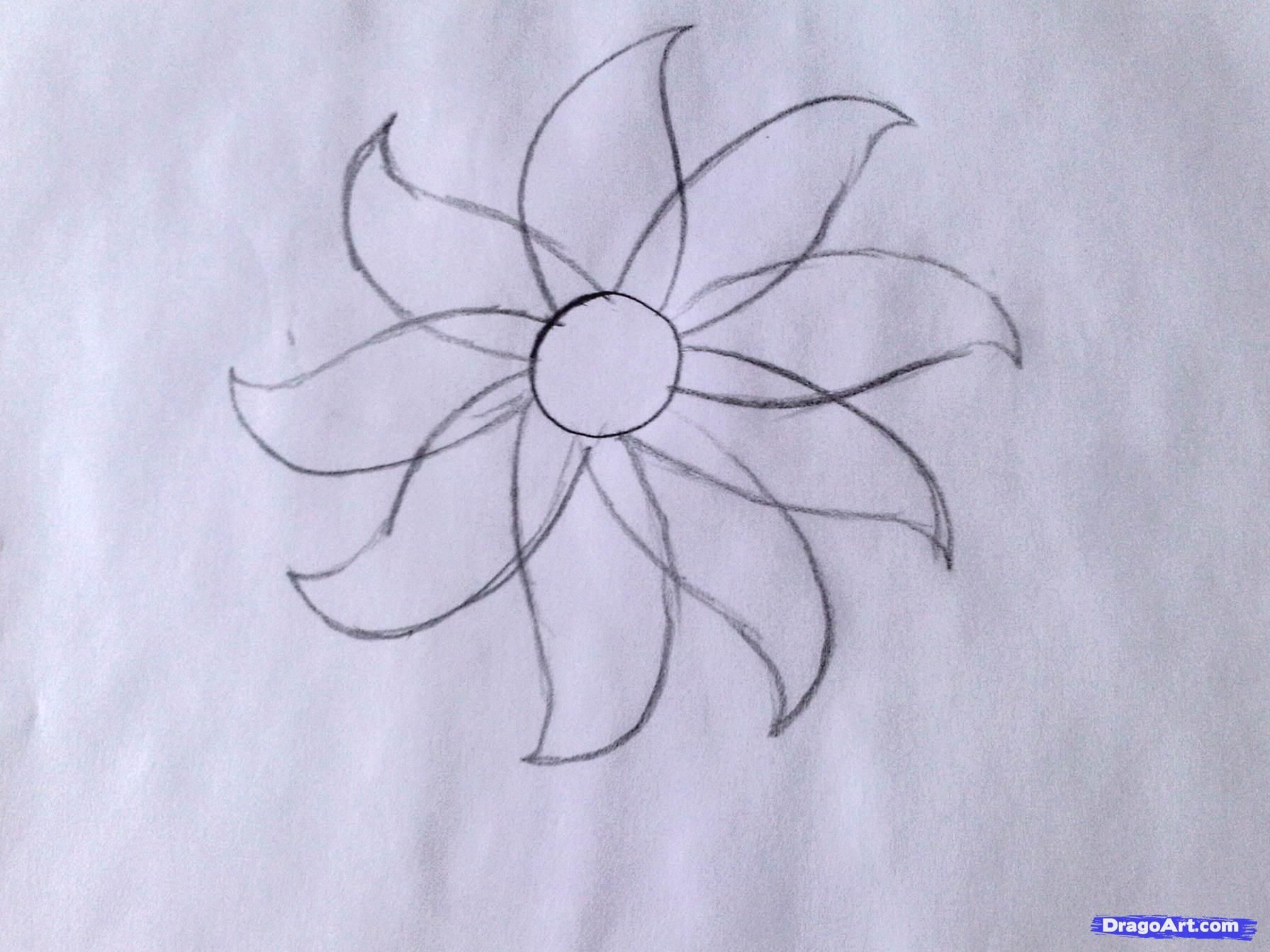 How to draw a flower easy step by step flowers for for How to draw a basic flower