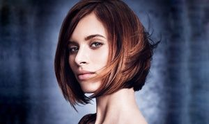 Salon Services at Lux Aveda Salon/Spa (Up to 51% Off). Two Options Available.