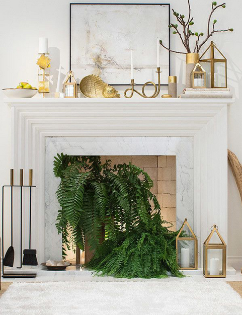 Ferns in the Fireplace  | Love It or Leave It
