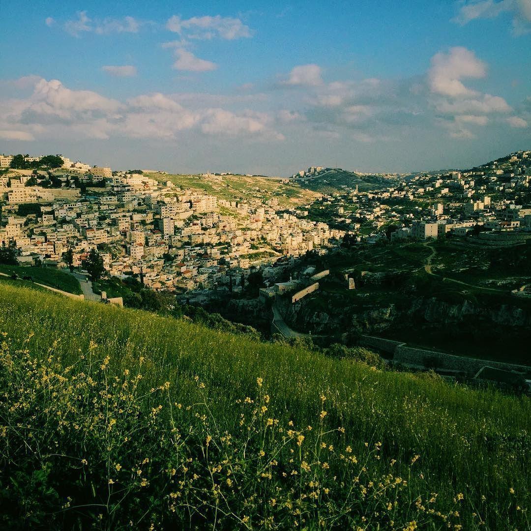 'Slopes' Jerusalem Israel March 2016 #iphoneonly #instagram