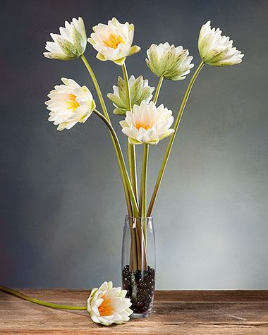 Water lily silk flower stem water lilies flower designs and water lily silk flower stem mightylinksfo