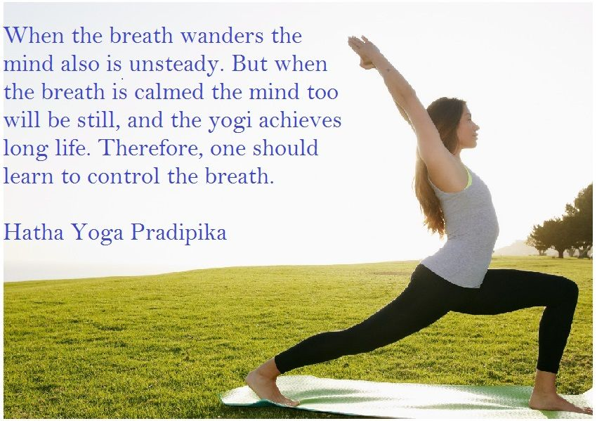 10 Best Image Quotes For International Yoga Day 21 June 2016