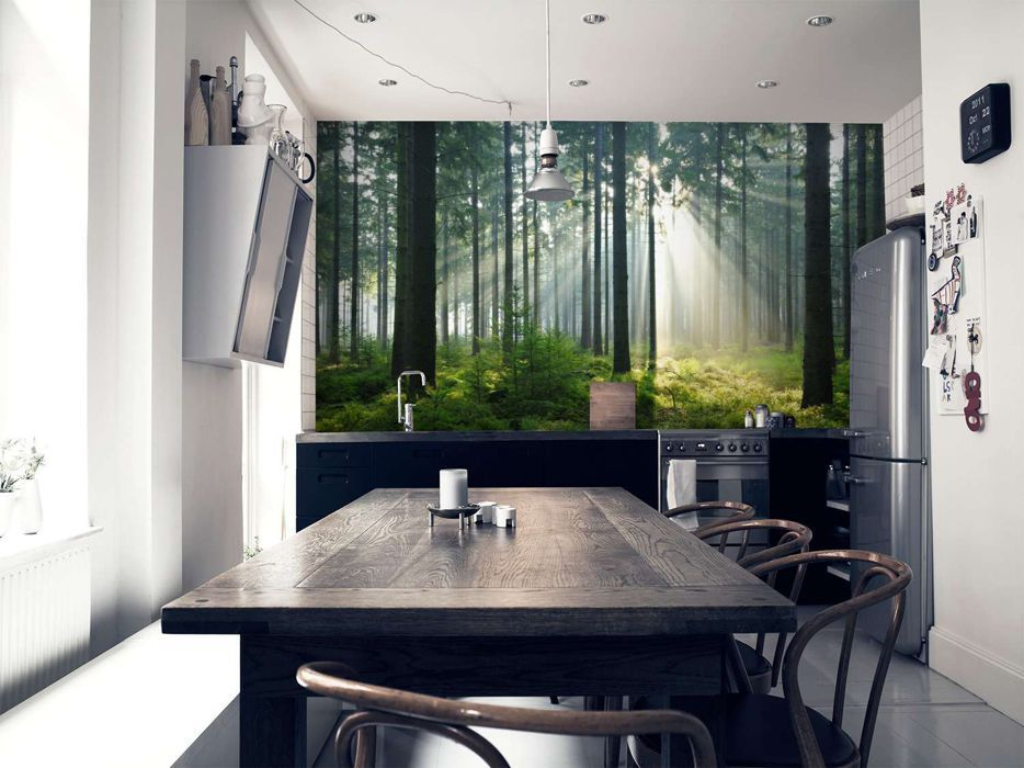 Enchanted Forest Wall Mural Wall Murals Wallpaper Paste And Wallpaper