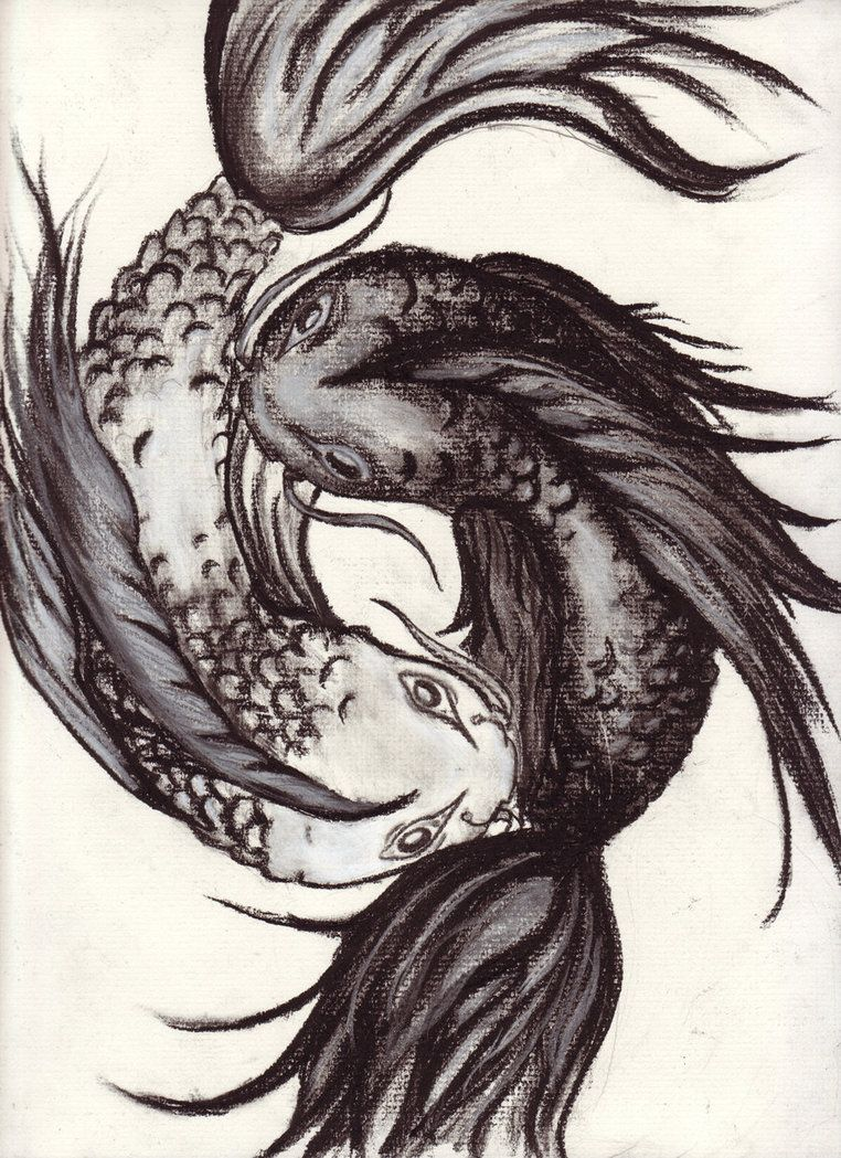 yin and yang tattoos   Black And Red Koi Yin Yang Tattoo On ...