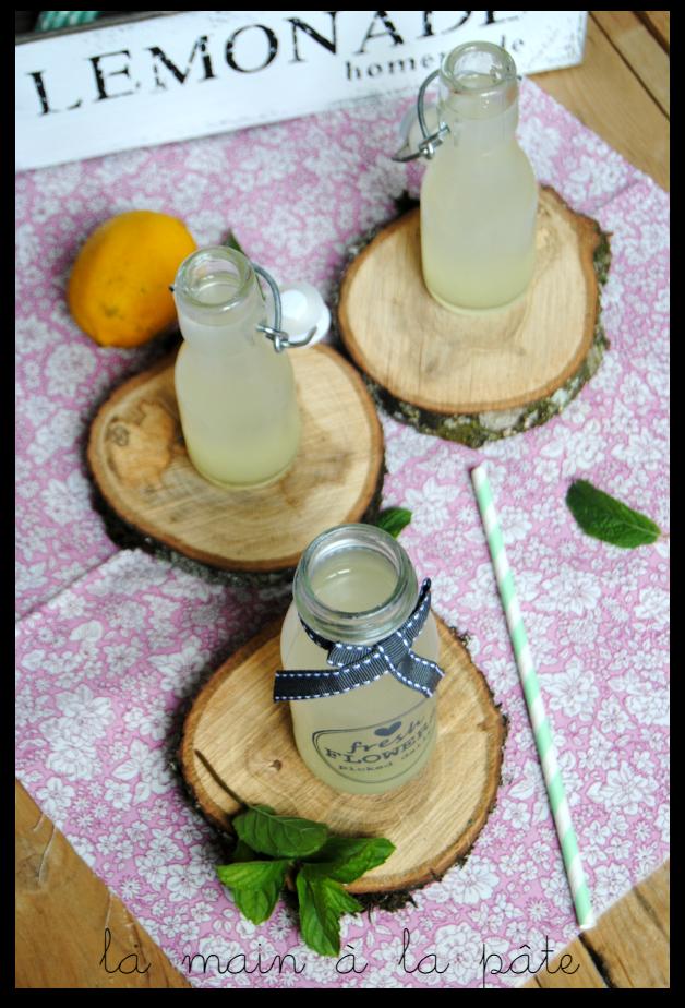 Limonade à l'eau de coco - lemonade with coconut water