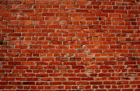 Brick Wall Tumblr