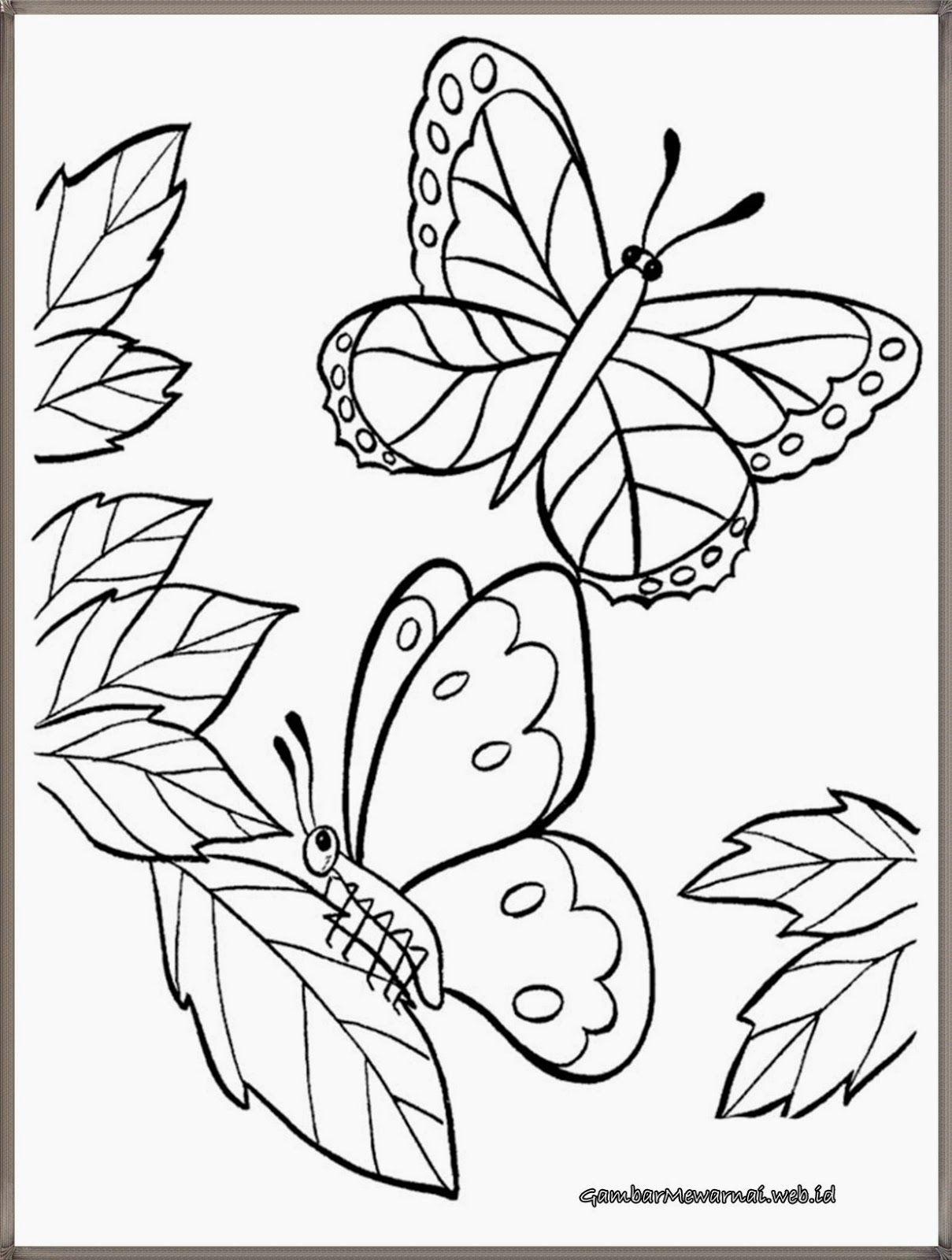 Gambar Bunga Dan Kupu-kupu : gambar, bunga, kupu-kupu, Mewarnai, Gambar, Kupu-kupu, Bunga, Halaman, Mewarnai,, Menggambar, Kupu-kupu,